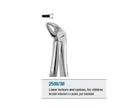 Pedodontic Tooth Forceps English Pattern Lower Incisors and Cani
