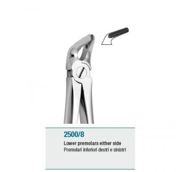 Anatomic Tooth Forceps English Pattern Lower Premolars either si