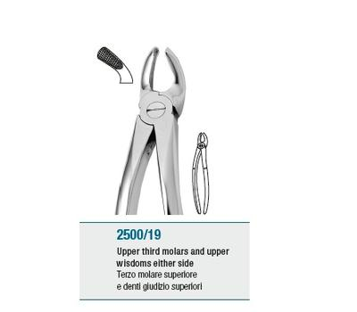 Anatomic Tooth Forceps English Pattern Upper Third Molars and Wi