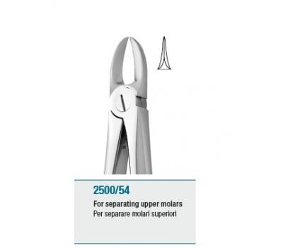 Anatomic Tooth Forceps English Pattern For Separating Upper Mola