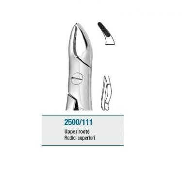 Anatomic Tooth Forceps English Pattern Upper Roots