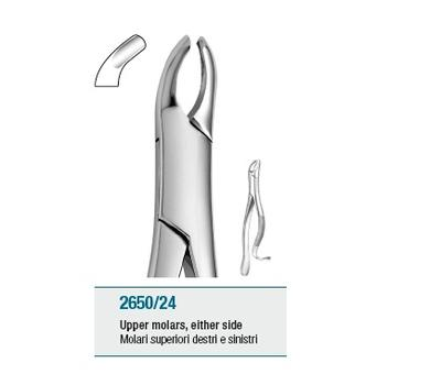 Tooth Forceps American Pattern Upper Molars either side